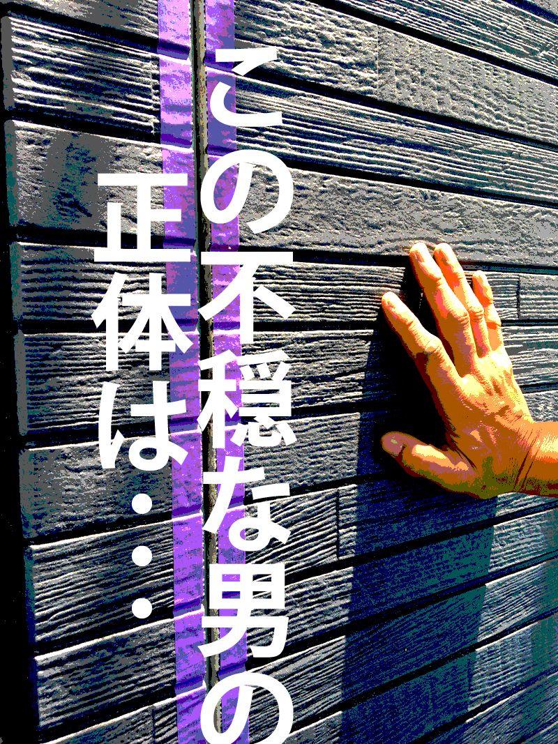 カマキリさんと外壁工事中♥IN2017